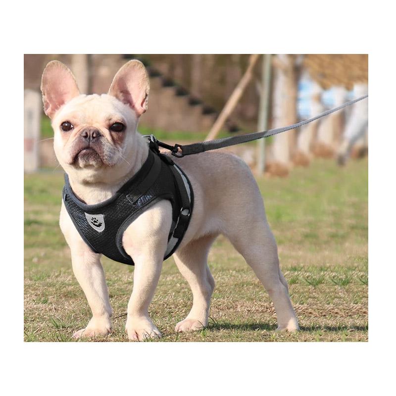 Σαμαράκι Γιλέκο Σκύλου με Λουρί SPM DYN-5059059098B