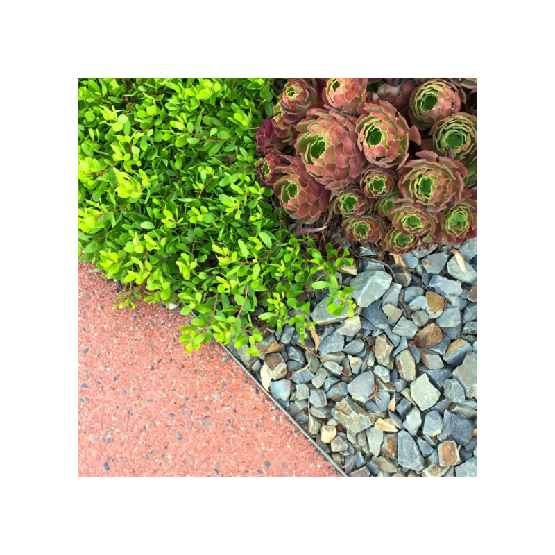 Σετ Μεταλλική Εύκαμπτη Μπορντούρα Κήπου 100 x 14 cm 5 τμχ SPM 40050152