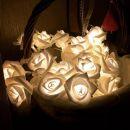 Τριαντάφυλλα με LED Φωτισμό SPM 20 rose fairy
