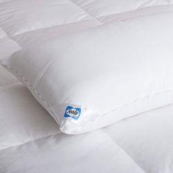 Μαξιλάρι Ύπνου Response για Μαλακή Στήριξη 70 x 45 cm Sealy 455961GE