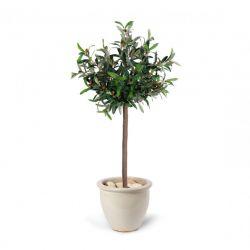 Τεχνητό Φυτό Ελιά 120 cm SPM 40050179