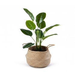 Τεχνητό Φυτό Scindapsus 70 cm SPM 40080816