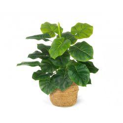 Τεχνητό Φυτό Alocasia 45 cm Inkazen 40080813