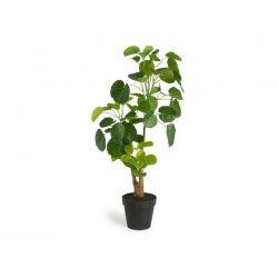 Τεχνητό Φυτό Aralia 68 cm Inkazen 40081819