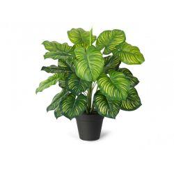 Τεχνητό Φυτό Maranta 45 cm Inkazen 40080814